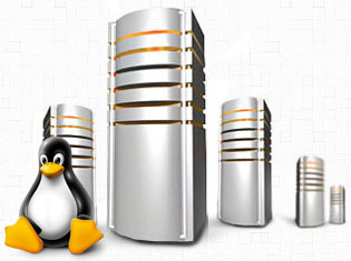 Linux Dedicated Servers Hosting