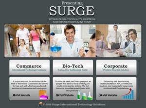 Surge International Technology Solutions  Web Design
