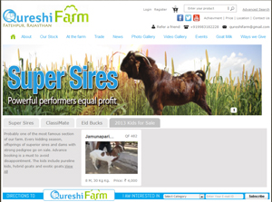 Qureshi Farm India Web Design