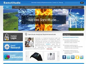 Sanctitude India Web Design