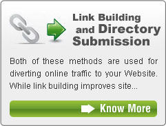 Link Building and Directory Submission